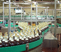 Full bottle conveyor